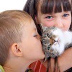 Домашние питомцы и дети