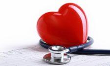 сердце кардиология